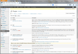 wordpress plugin area
