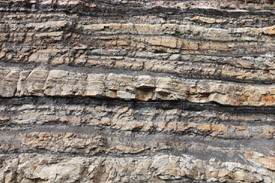 a coal seam in sedimentary rock