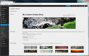 wordpress custom header