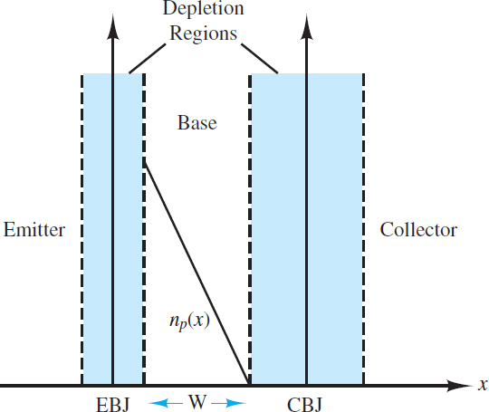 Equilibrium concentration gradient of free electrons in thep-type base of a forward-biasedNPNtransistor.